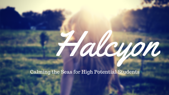 Halcyon graphic